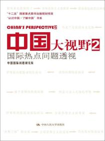 """中国大视野2:国际热点问题透视/""""认识中国·了解中国""""书系"""