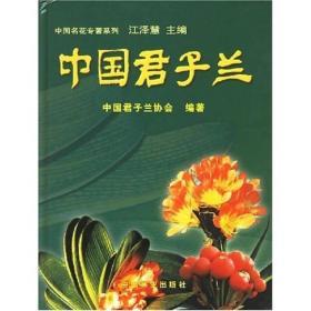 中国君子兰