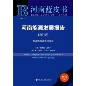 河南蓝皮书—河南能源发展报告(2018)