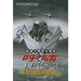 美国王牌军兴衰录:呼啸的美利坚之鹰——美国王牌军兴衰录丛书