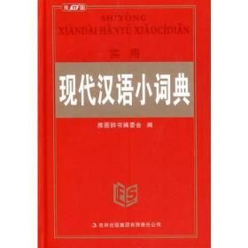 实用现代汉语小词典