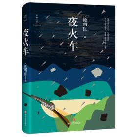 中國當代長篇小說:夜火車 (精裝)
