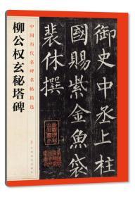 中国历代名碑名帖精选·柳公权玄秘塔碑