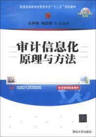 审计信息化原理与方法