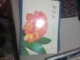 君子兰特种邮票发行纪念邮折  见图.