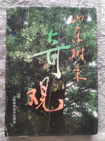 山东树木奇观 (全书共190篇,照片167幅)