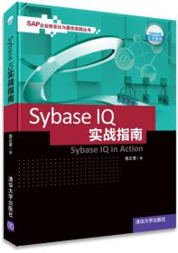SAP企业信息化与最佳实践丛书:Sybase IQ 实战指南
