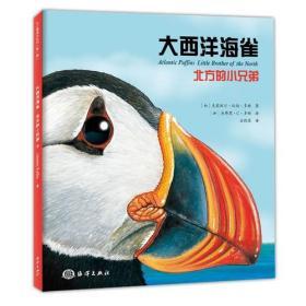 大西洋海雀 : 北方的小兄弟