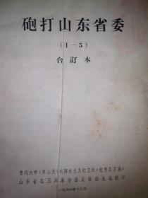 炮打山东省委【1-5】合订本