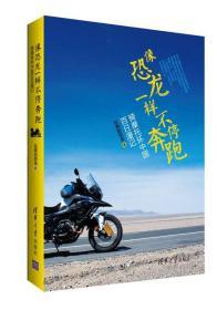 像恐龙一样不停奔跑::骑摩托环中国百日漫记