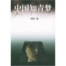 中国知青梦