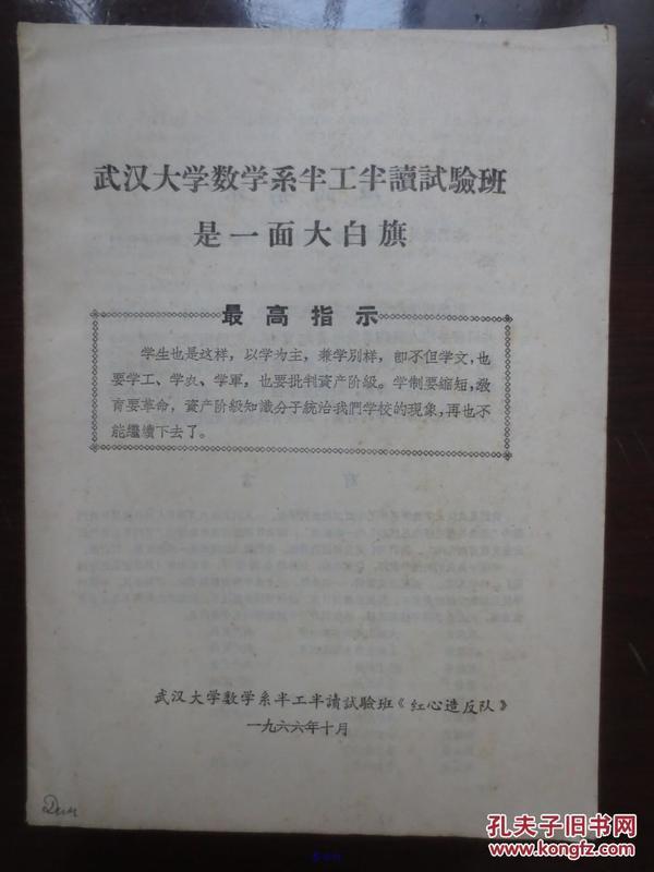 武汉大学数学系半工半读试验班是一面大白旗