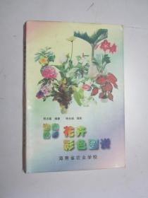 海南热带花卉彩色图说