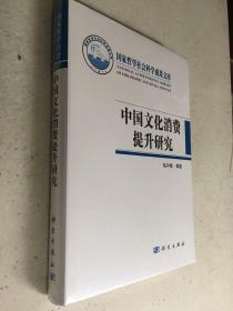 中国文化消费提升研究(精装本 全新原封装未开封)