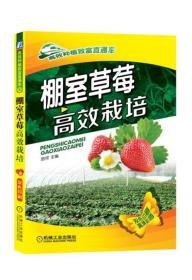 棚室草莓高效栽培