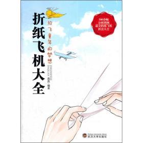 折纸飞机大全 放飞童年的梦想