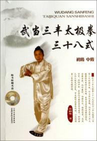 武当三丰太极拳三十八式(无盘)