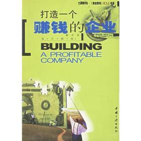 打造一个赚钱的企业:新企业设计指南