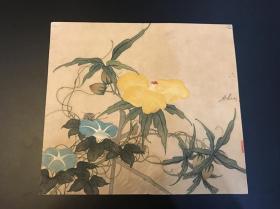 清代佚名《工笔花卉》镜片 年份到嘉道时期 画工好
