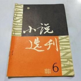 小说选刊 1981(6)