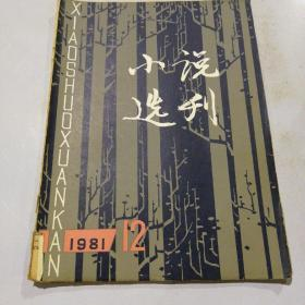 小说选刊 1981(12)