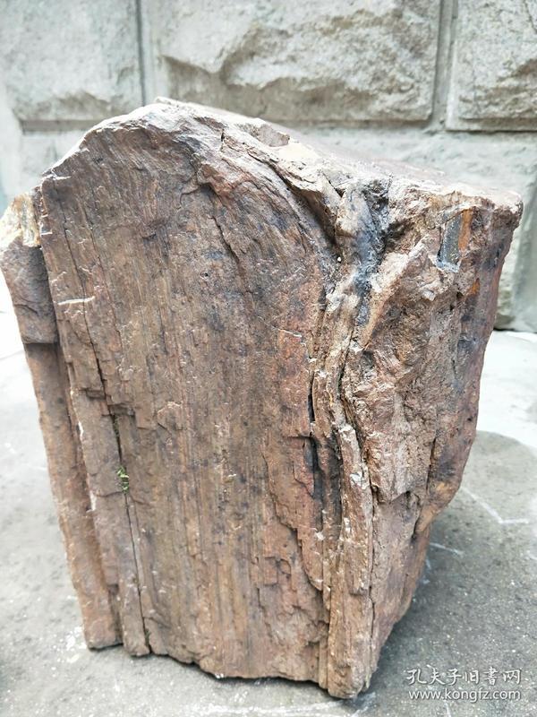 天然木化石、奇石,重量:75斤,稀有大块木化石,天然纹路,有木纹,特大摆件,结有缘人