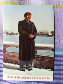 毛主席像(1张正反面)六十年代印刷品