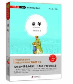 童  年(无障碍阅读)/语文新课标必读丛书 经典名著天天读