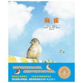 来自梵高故乡的图画书-麻雀