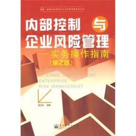 内部控制与企业风险管理:实务操作指南(第2版)