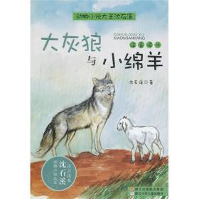 動物小說大王沈石溪·注音讀本:大灰狼與小綿羊
