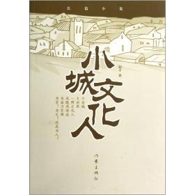 小城文化人:长篇小说
