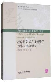 战略性新兴产业融资的效率与风险研究