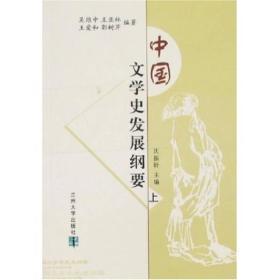 中国文学史发展纲要(上下)