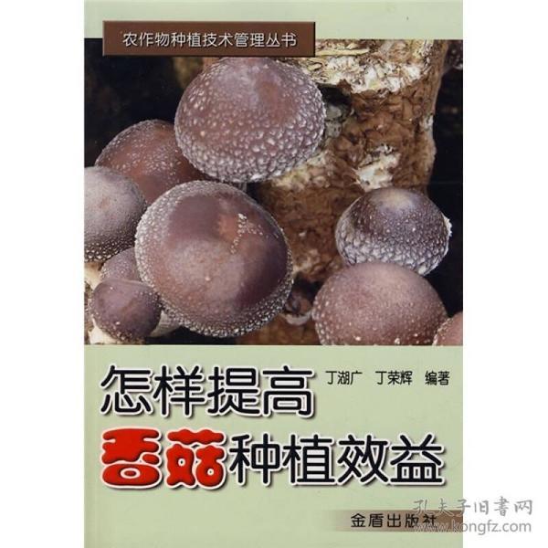 怎样提高香菇种植效益
