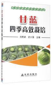 甘蓝四季高效栽培/蔬菜四季栽培新技术丛书