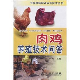 肉鸡养殖技术问答