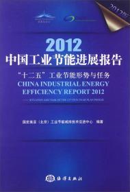 """2012中国工业节能进展报告:""""十二五""""工业节能形势与任务"""
