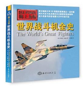 海上力量--世界战斗机全史