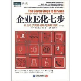 企业E化七步:企业电子商务战略与操作指南(第2册)