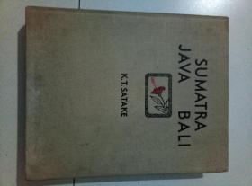 sumatra   大16开精装布面巨册