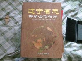 辽宁省志文化志.16开本.精装.