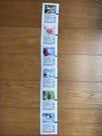 彩票<公益体彩音乐人生》(6枚一套6种彩色图打印票连票)