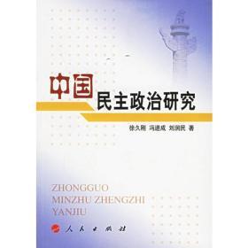 二手正版 中国民主政治研究 徐久刚 人民出版社9787010054087