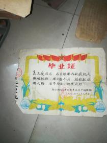 农机人员培训班 毕业证  株洲市郊区革命委员会