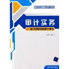 江苏省教育厅立顶建设精品教材·审计实务:基于风险导向审计理念