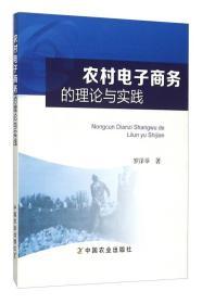 正版 农村电子商务的理论与实践 罗泽举 中国农业出版社