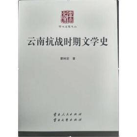 云南抗战时期文学史