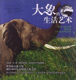 大象的生活艺术