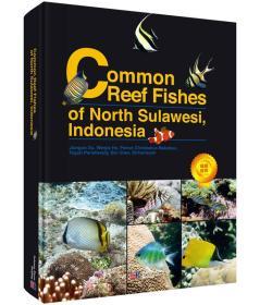 印尼北苏拉威西海常见珊瑚礁鱼类图集(英文版)